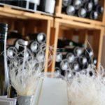 Eine Flasche Wein enthält mehr Wissen als alle Sachbücher der Welt. - Böhmer, Donauregion, Donautal, Dürnstein, Flaschen, Getränk, Regal, Schlossberg, Vogelbergsteig, Wachau, Wein, Weinflaschen, Weingut Böhmer, Weinregal - (Dürnstein, Niederösterreich, Österreich)