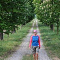 Albanien? Kastanien! - Allee, Baumallee, Bäume, Natur, Spazierweg, Weg - HOFBAUER-HOFMANN Sofia - (Stetteldorf am Wagram, Niederösterreich, Österreich)