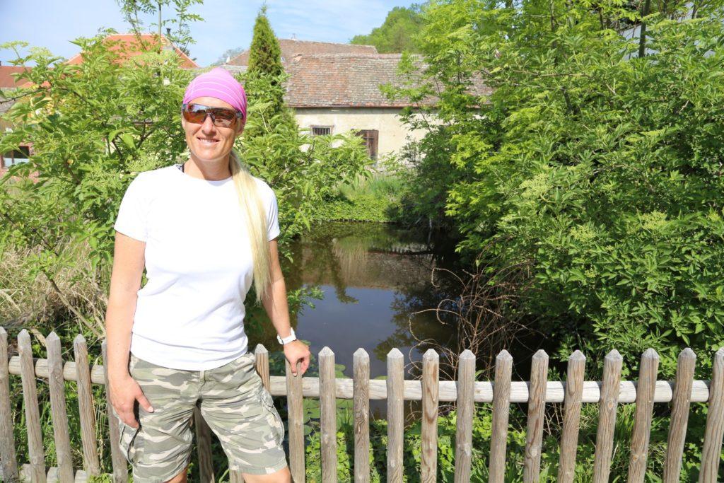 Zaungast - Garten, Gebäude, Sträucher, Teich, Wasser, Zaun - HOFBAUER-HOFMANN Sofia - (Königsbrunn, Hippersdorf, Niederösterreich, Österreich)