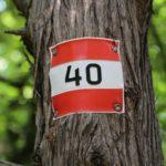 Ab 40 ist es zu spät seine Zeit zu vergeuden. - Bäume, Markierung, Natur, Richtungsanzeiger, Schild, Tafel, Wald, Wegweiser - (Baden, Niederösterreich, Österreich)