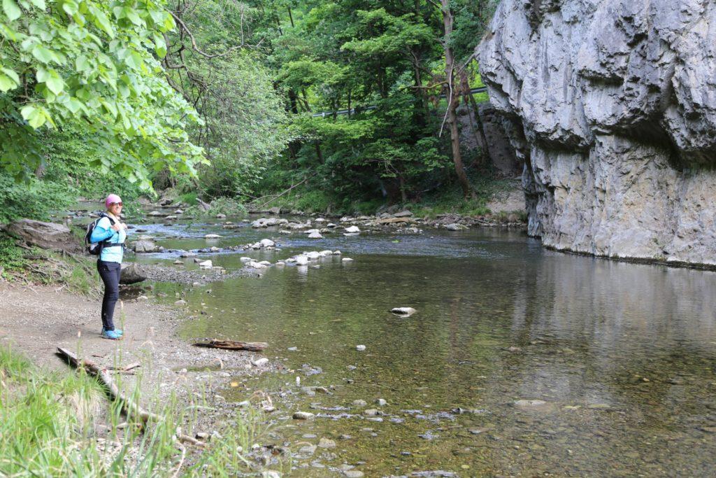 Wie fein! - Allein am Urtelstein. - Fluss, Natur, Schwechat, Urtelstein, Urtheilstein, Wasser - HOFBAUER-HOFMANN Sofia - (Helenental, Baden, Niederösterreich, Österreich)