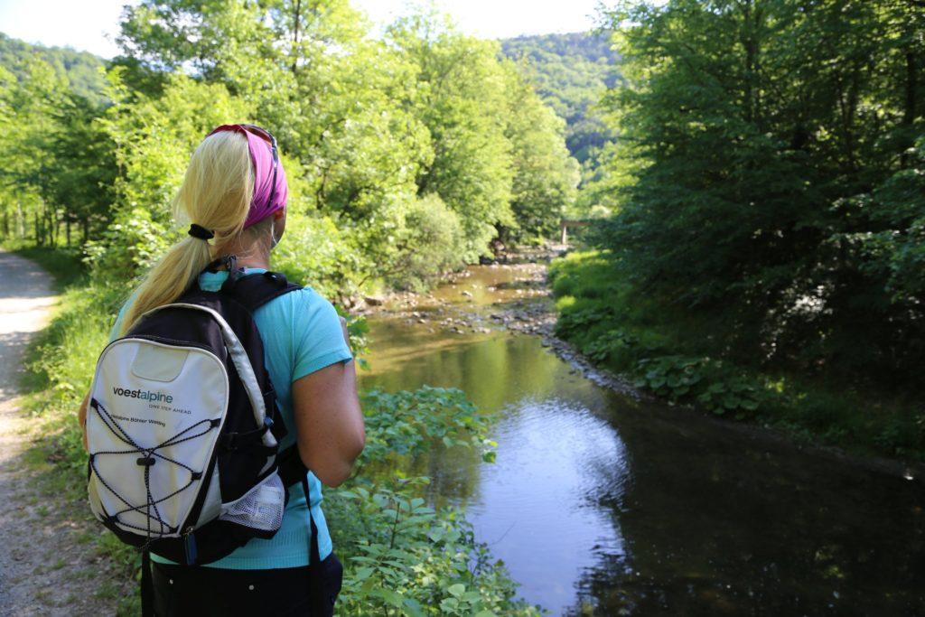 Komm, wir gehen gemeinsam den Bach runter :-) - Bäume, Fluss, Gewässer, Natur, Schwechat, Weg - HOFBAUER-HOFMANN Sofia - (Krainerhütte, Siegenfeld, Niederösterreich, Österreich)