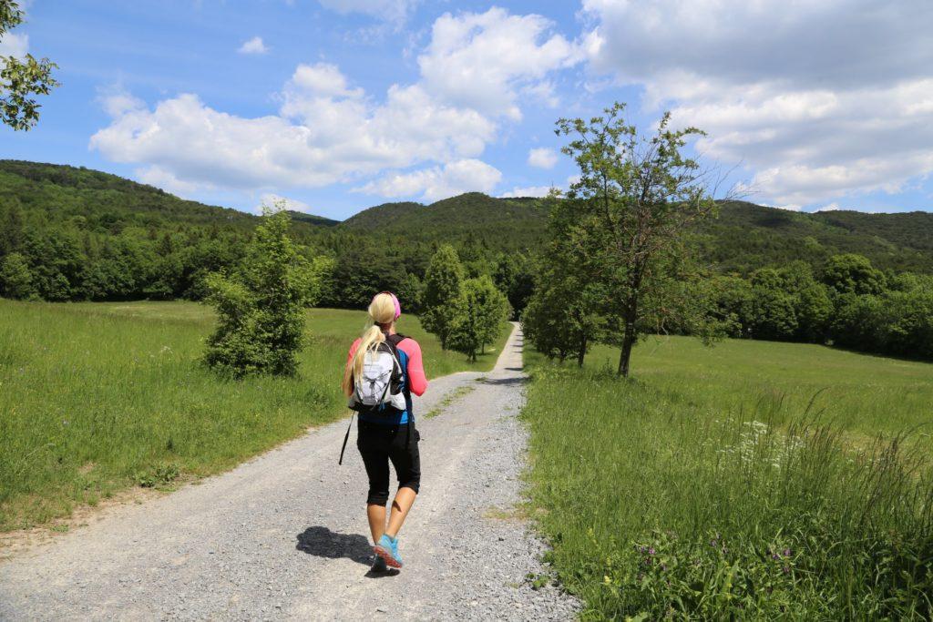 Gib ihr die richtigen Schuhe und sie ist nicht aufzuhalten. - Bäume, Himmel, Landschaft, Natur, Wandern, Wanderweg, Weg, Wolken - HOFBAUER-HOFMANN Sofia - (Rohrbach, Niederösterreich, Österreich)
