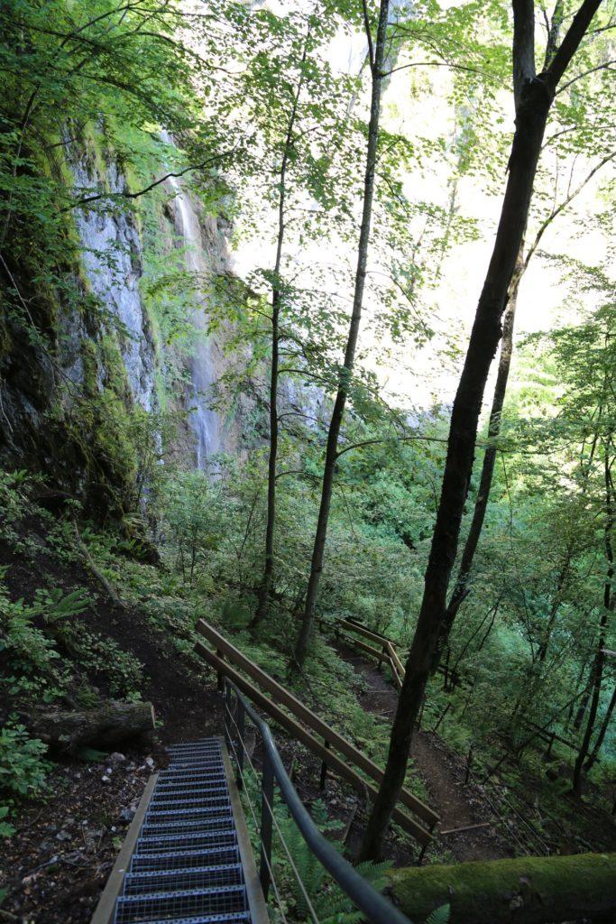 Stairway to waterfall - Aufstieg, Bäume, Felswand, Geländer, Muckenkogel, Pfad, Steig, Stiegen, Wasserfallsteig, Weg - (Lilienfeld, Niederösterreich, Österreich)
