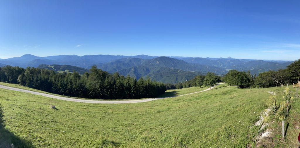 Feinste Aussicht gibts noch dazu! - Ausblick, Aussicht, Bäume, Landschaft, Muckenkogel, Natur, Panorama, Traisnerhütte, Wald, Wiese - (Freiland, Niederösterreich, Österreich)
