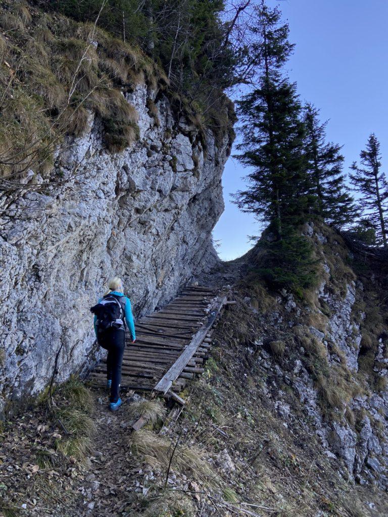 Nicht mehr weit ists bis zum Gippeltörl - Berg, Felsen, Felswand, Gebirge, Gippel, Mürzsteger Alpen, Personen, Pfad, Treibsteig, Wanderweg, Weg - HOFBAUER-HOFMANN Sofia - (Gschaidl, Kernhof, Niederösterreich, Österreich)