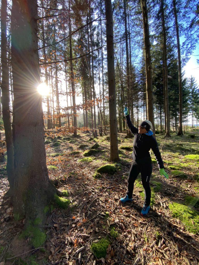 Waldviertler Novembersonne ist meine goldene Wonne! - Bäume, Baumstämme, BOF2020, Erlebnis-Wanderweg, Freiwald, Himmel, Laub, Licht, Lichteinfall, Moos, Nebelstein, Niederösterreich, Personen, Sonne, Wald, Waldviertel, Wolken - (Hirschenwies, Niederösterreich, Österreich)