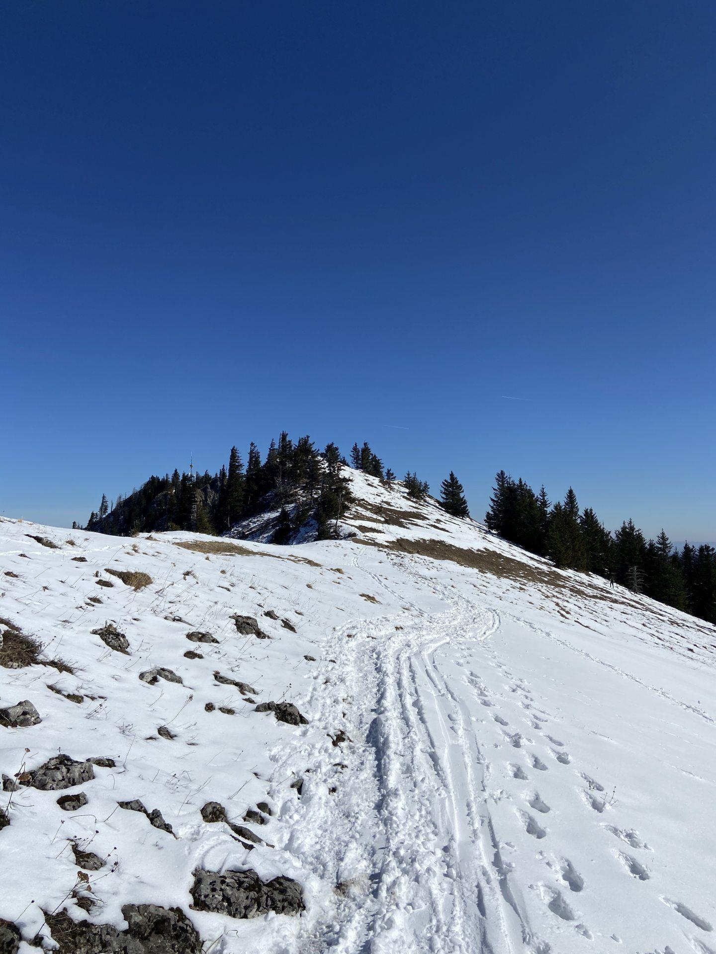 Verschneit, aber wunderbar zu begehen! - Himmel, Kaiserwetter, Natur, Pfad, Ramsau, Schnee, Spuren, Unterberg, Weg, wolkenlos - (Adamsthal, Kieneck, Niederösterreich, Österreich)