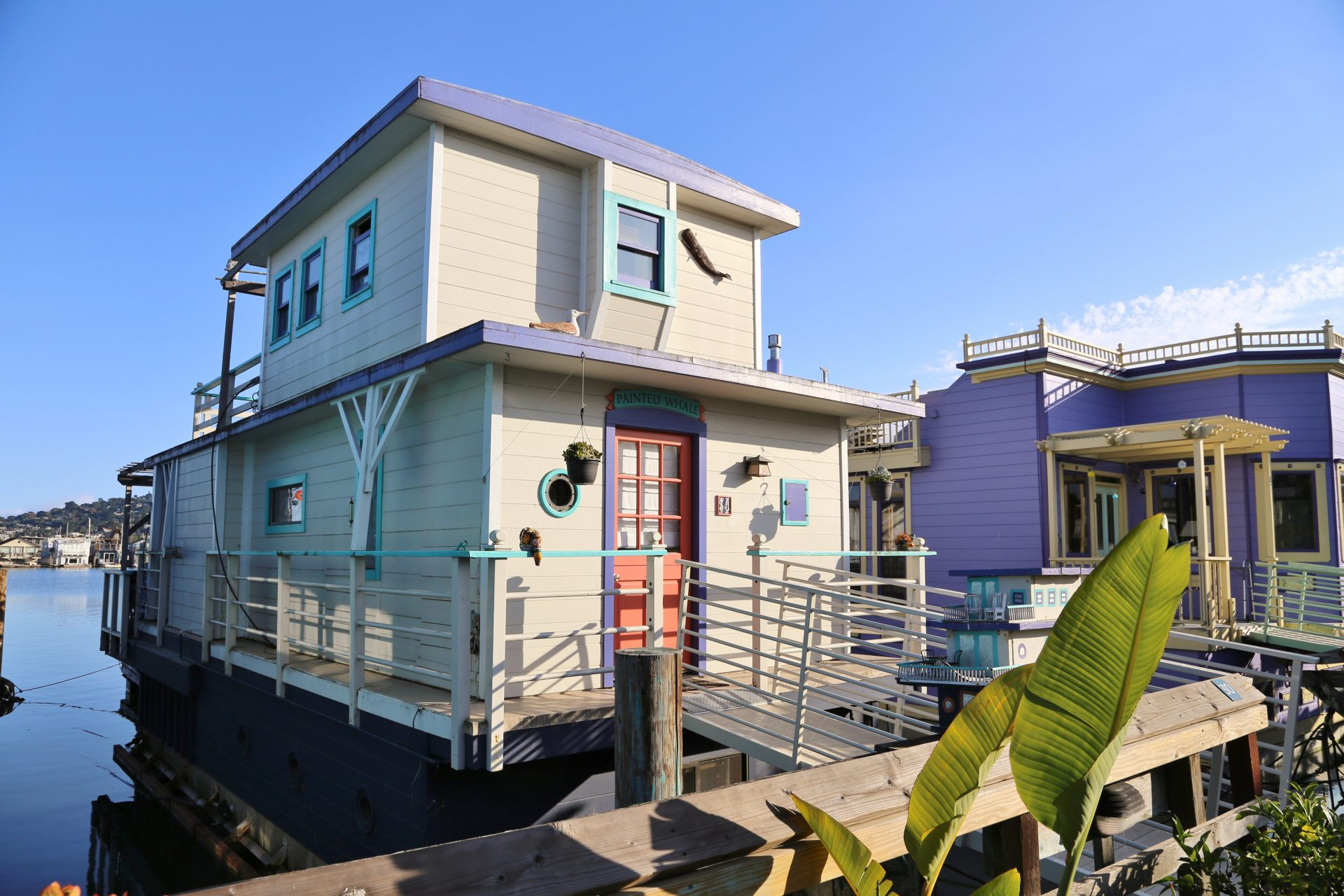 Painted Whale - Ankerplatz, Architektur, Boot, Gebäude, Haus, Hausboote, Himmel, Kalifornien, Painted Whale, San Francisco, Sausalito, Schiff, Wasser - (Waldo, Sausalito, California, Vereinigte Staaten)