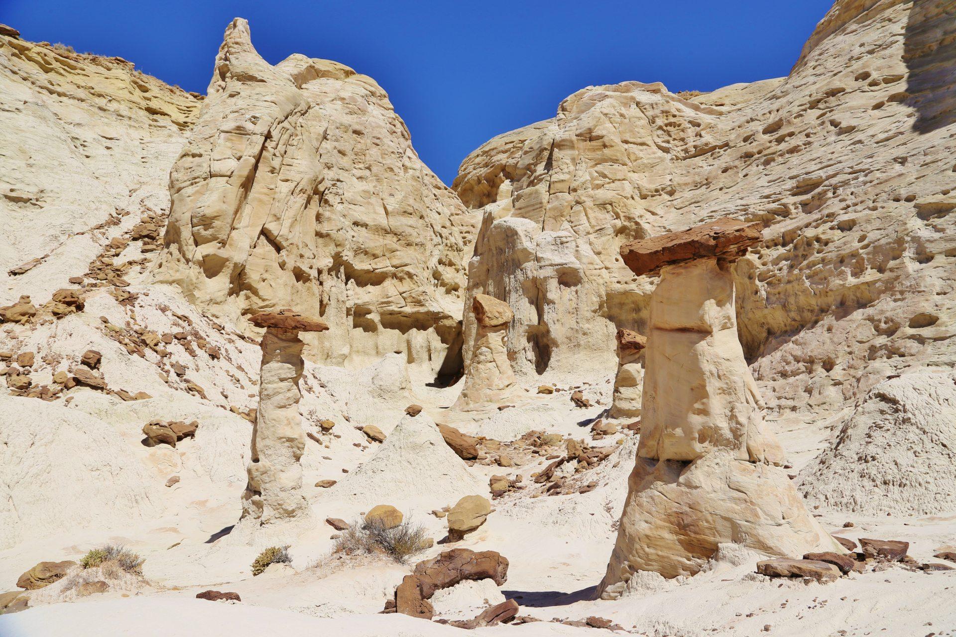 Die Schwammerl gibts auch in weiß! - Farben, farbenfroh, Felsformationen, Felslandschaft, Felsnadeln, Geologie, Gesteinsschichten, Grand Staircase Escalante National Monument, GSENM, Himmel, Hoodoos, malerisch, Monolithen, Paria Rimrocks, Sandstein, Sandsteinformationen, Steinmännchen, The Rimrocks, traumhaft, Utah - (Paria, , Utah, Vereinigte Staaten)