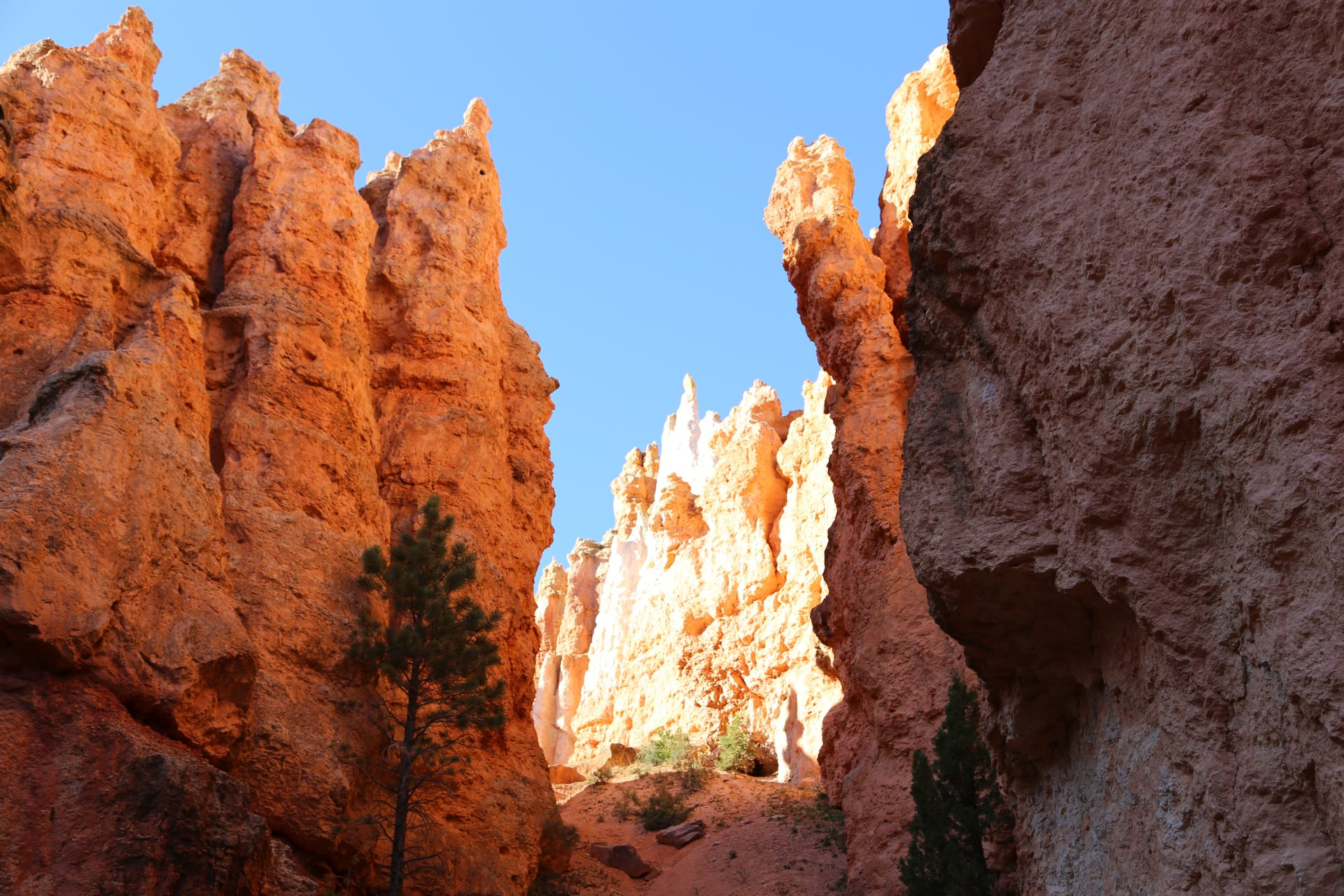 Tolle Lichtspiele am späten Nachmittag - Bryce Canyon National Park, Canyon, Erosion, farbenfroh, Felsnadeln, Felstürme, Felswände, Geologie, Gestein, Gesteinssäulen, Gesteinsschichten, Himmel, Hoodoos, Monolithen, Navajo Loop Trail, Sandstein, Schlucht, Utah - (Bryce Canyon, Bryce, Utah, Vereinigte Staaten)