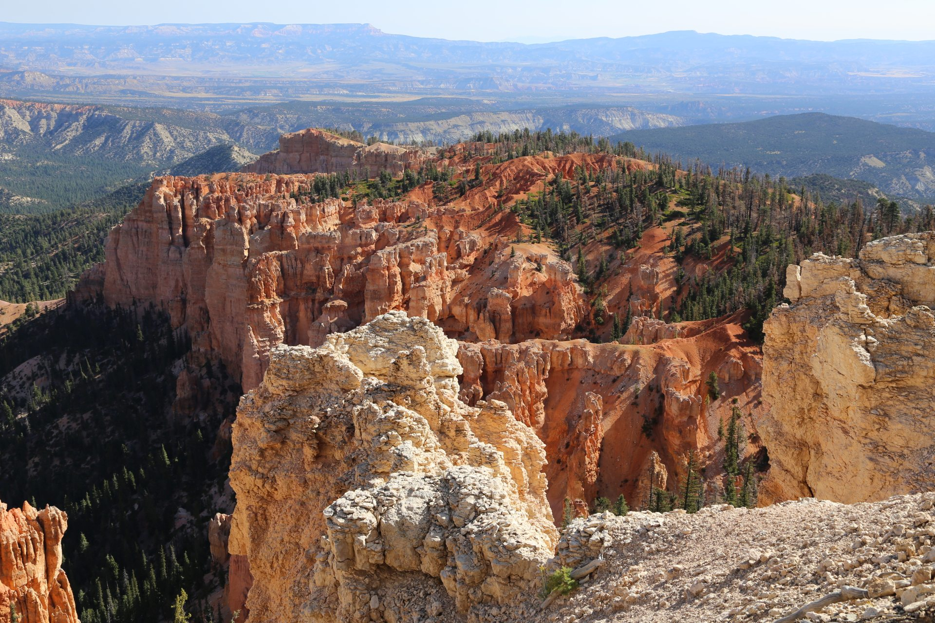 Beeindruckende Ausblicke egal wohin das Auge schaut - Aussicht, Bäume, Bryce Canyon National Park, Canyon, Erosion, farbenfroh, Felsnadeln, Fernsicht, Geologie, Gestein, Gesteinssäulen, Gesteinsschichten, Himmel, Hoodoos, Landschaft, Monolithen, Natur, Panorama, Sandstein, Utah - (Georgetown, Bryce, Utah, Vereinigte Staaten)