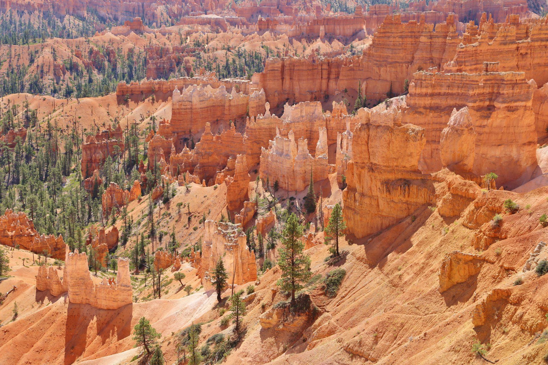 Innenansichten des Bryce Canyons - Aussicht, Bryce Canyon National Park, Canyon, Erosion, farbenfroh, Felsnadeln, Felstürme, Fernsicht, Geologie, Gestein, Gesteinssäulen, Gesteinsschichten, Himmel, Hoodoos, Landschaft, Monolithen, Natur, Panorama, Queens Garden Trail, Sandstein, Utah - (Bryce Canyon, Bryce, Utah, Vereinigte Staaten)