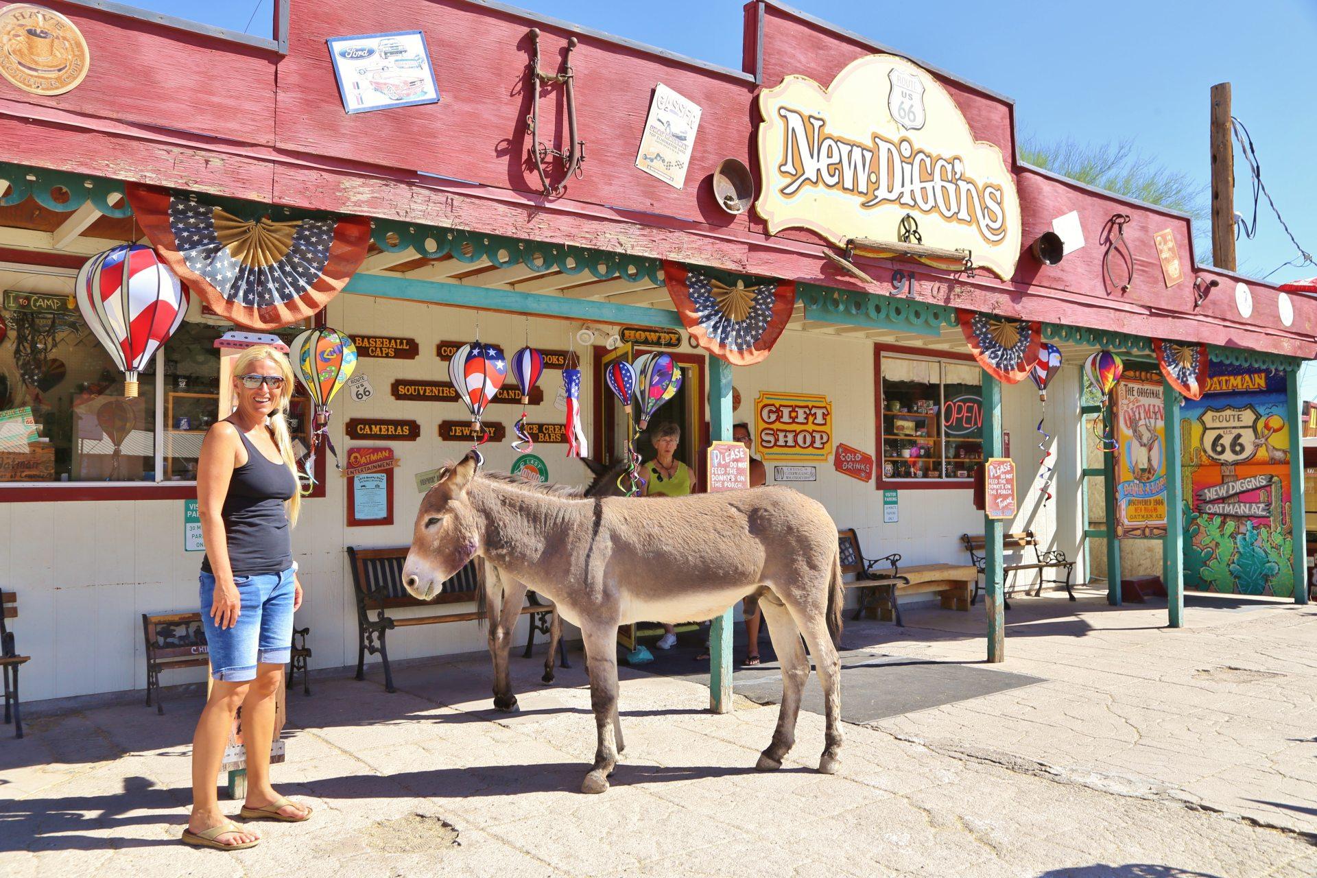 In Oatman sind die Esel los! - Arizona, Blondine, Burro, Esel, Gebäude, Ghost town, Gift Shop, New Diggins, Oatman, Oatman Ghost Town, Personen, Portrait, Porträt, Route 66, Souvenierladen - HOFBAUER-HOFMANN Sofia - (Oatman, Arizona, Vereinigte Staaten)